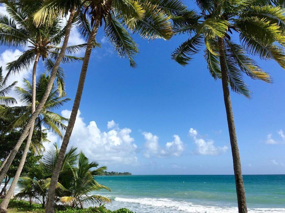 Partir à la découverte de la Martinique en voiture de location